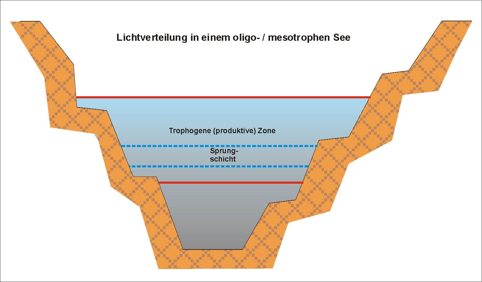 slide0007_image017